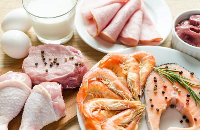 Rola białka w żywieniu pacjentów onkologicznych
