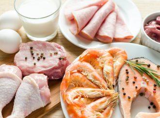 Odżywki białkowe- Zastosowanie, zalety, rodzaje